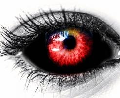 ハムスター 赤目 種類 病気 視力