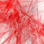 ハムスターの床材に血がついてる場合の原因と対処法について