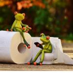 ハムスターの巣箱の掃除、トイレのしつけ