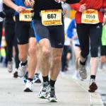 ハムスターの一日の走る距離はなんとハーフマラソンに匹敵する?