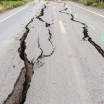 地震の予兆をハムスターはすることができるのでしょうか
