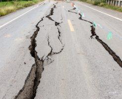 ハムスター 地震 予兆